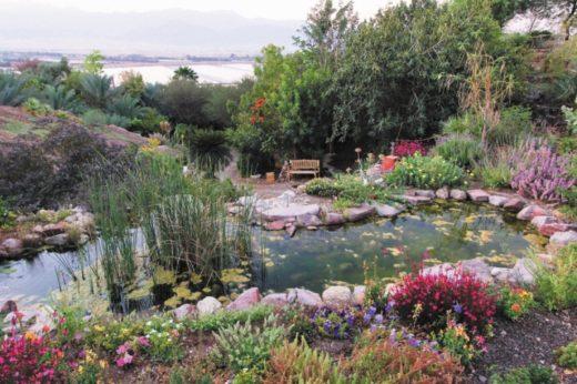 Ботанический сад Эйлата