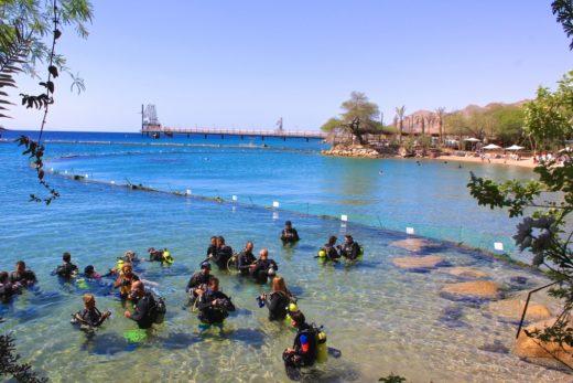 Пляж Дельфиний риф