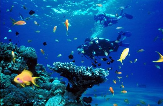 Подводный ресторан Red Sea Star в Эйлате